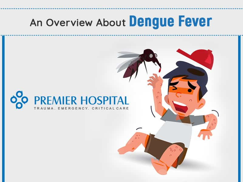 An Overview About Dengue Fever