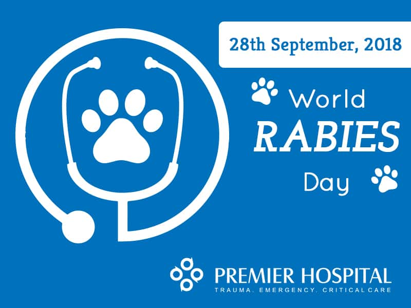 Rabies – All You Need To Know